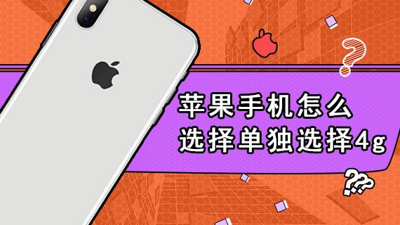 苹果手机怎么选择单独选择4g