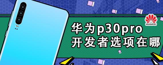 华为p30pro开发者选项在哪