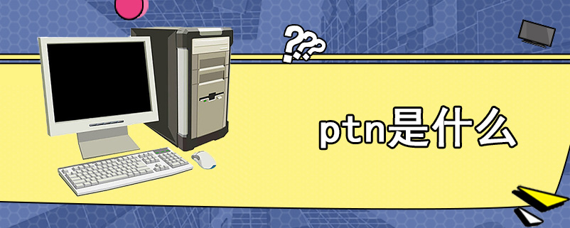 ptn是什么