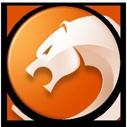 金山猎豹浏览器电脑版