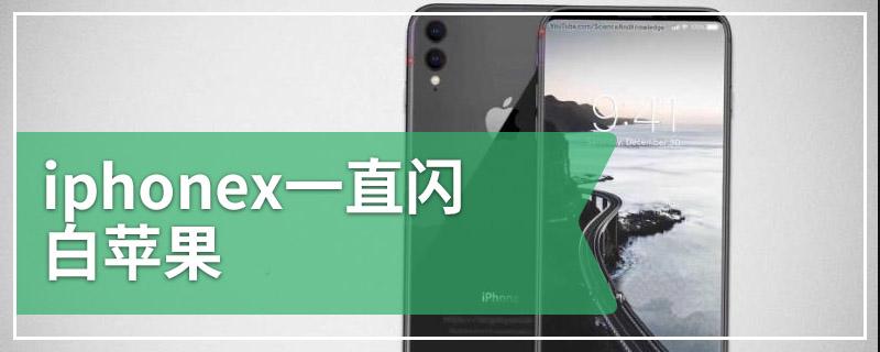 iphonex一直闪白苹果