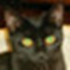 img写盘工具diskimage下载