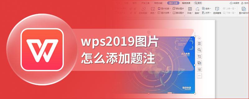 wps2019图片怎么添加题注