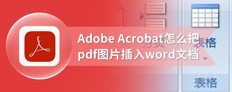 Adobe Acrobat怎么把pdf图片插入word文档