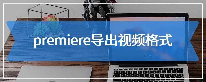 premiere导出视频格式