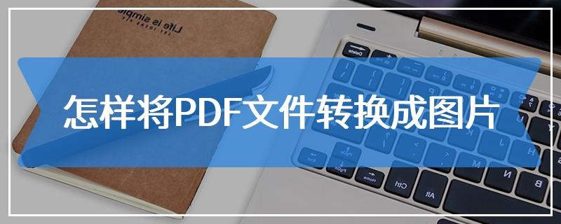 怎样将PDF文件转换成图片
