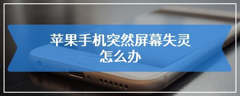 苹果手机突然屏幕失灵怎么办