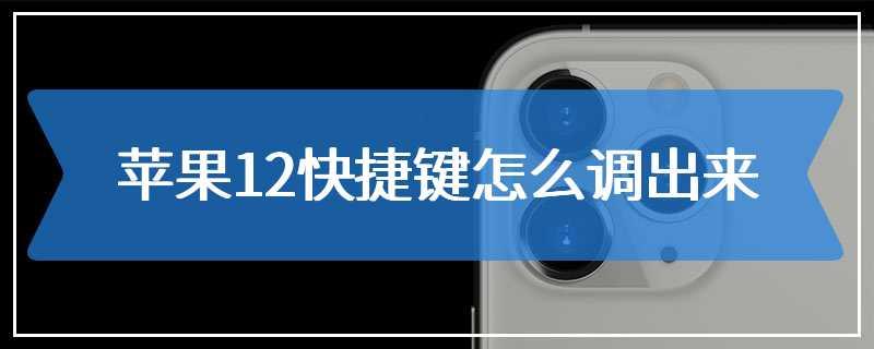 苹果12快捷键怎么调出来
