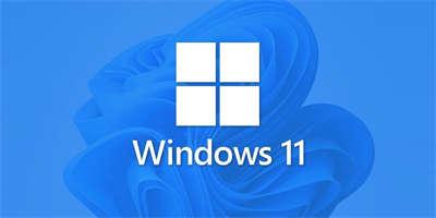 Windows 11:除了蓝白当机画面 我还会黑白当机
