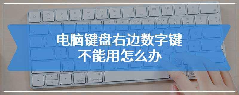 电脑键盘右边数字键不能用怎么办