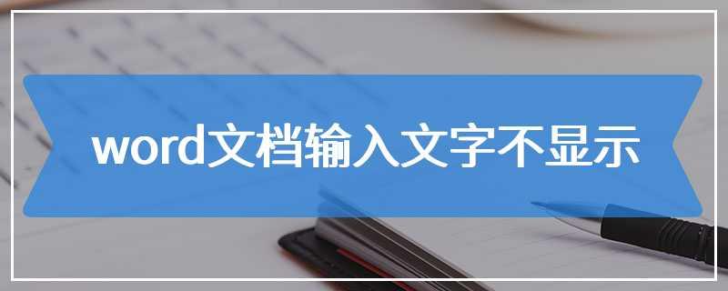 word文档输入文字不显示