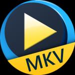 Aiseesoft Free MKV Player(MKV播放器)