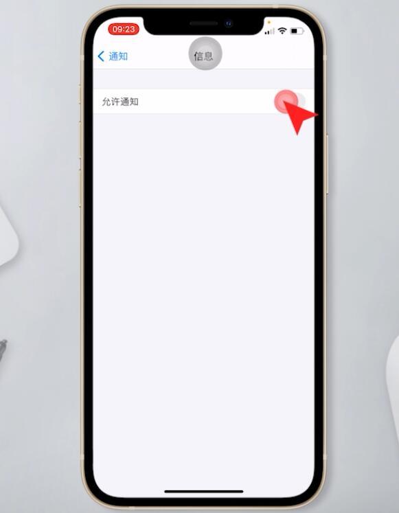 苹果手机短信不显示在屏幕上(3)