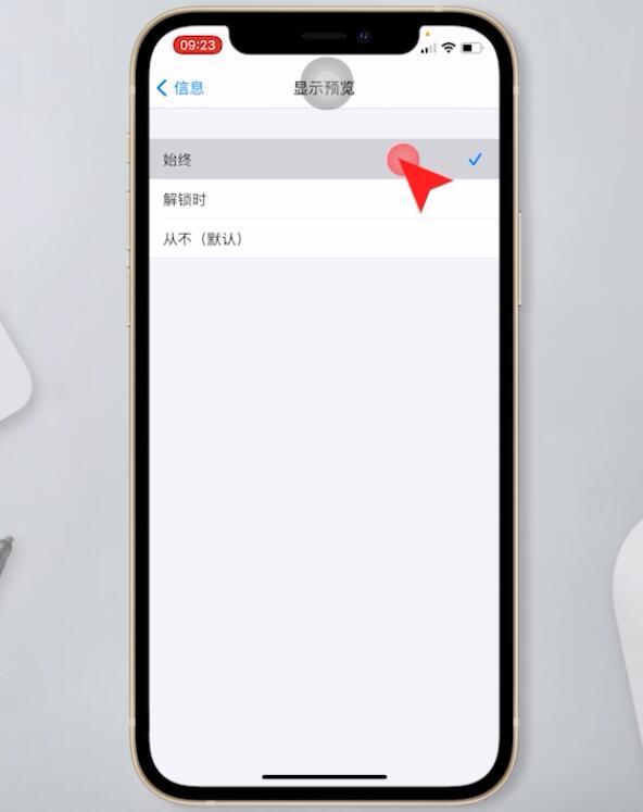 苹果手机短信不显示在屏幕上(5)