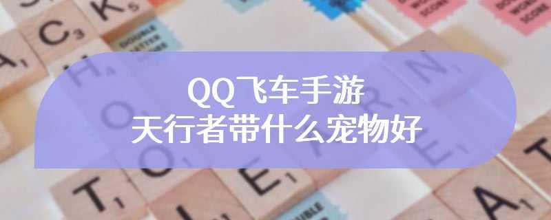 QQ飞车手游天行者带什么宠物好