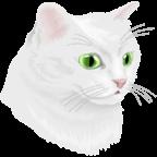 猫与黄泉路(Cat and Ghostly Road)