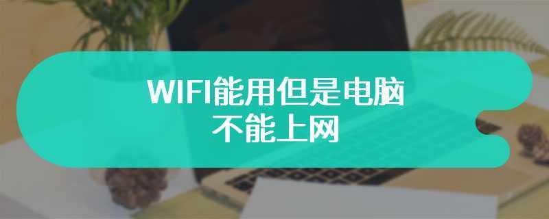 WIFI能用但是电脑不能上网