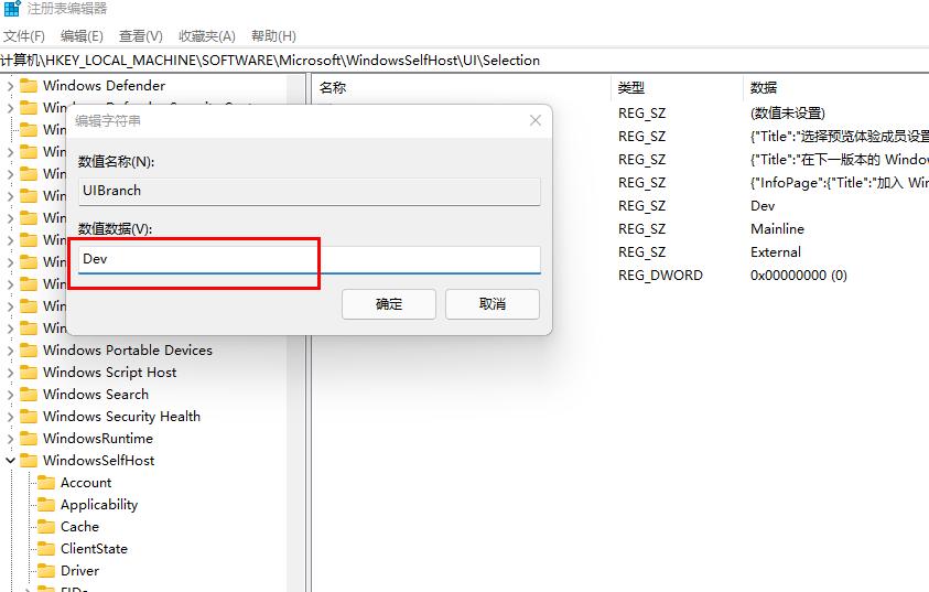 预览计划通道Release Preview怎么修改成dev通道(2)
